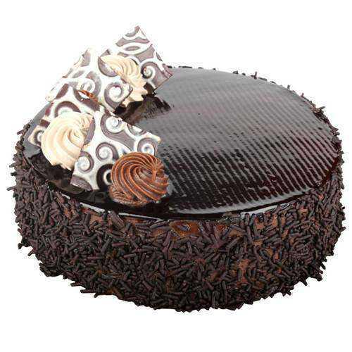 Succulent Chocolate Cake