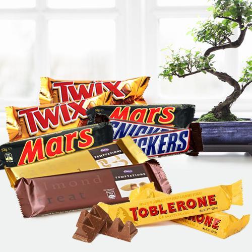 Delicous Chocolate Bars Hamper