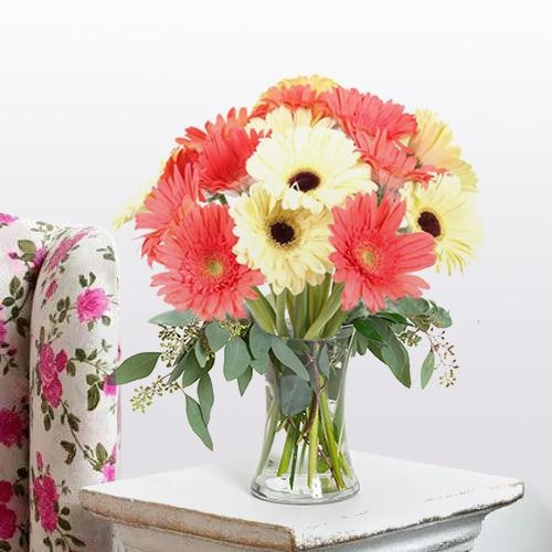 Enigmatic Freshness Gerbera Assemblage