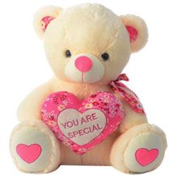 Alluring Teddy Bear