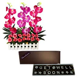 Gift of Get Well Soon Chocolates N Long Lasting Orchids Arrangement
