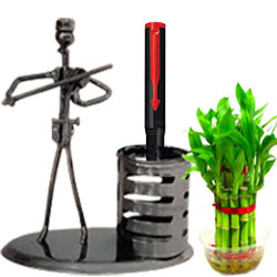 Fancy Pack of Metalic Stand with Pen N Bamboo Plant