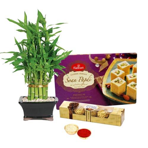Ferrero Rocher Chocos N Bamboo Plant with Soan Papdi