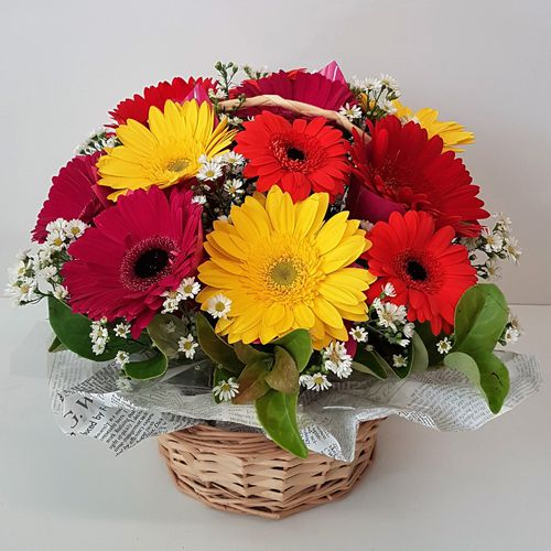 Special Basket of Assorted Gerberas