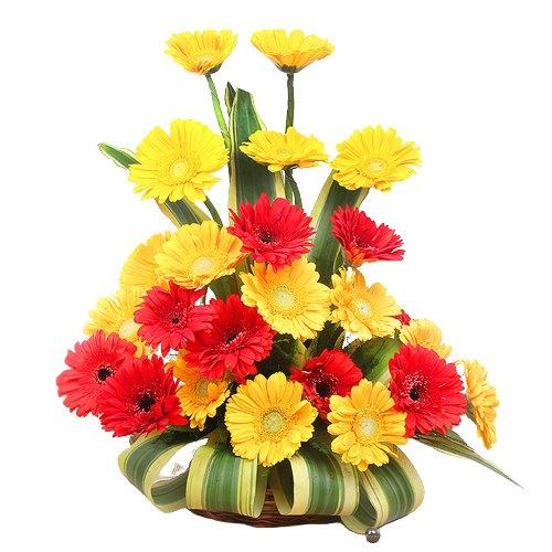 Radiant Roses in a Vase