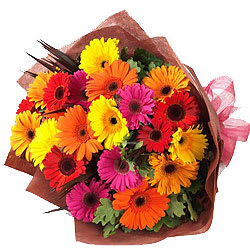 Charming Bunch of Mixed Gerberas