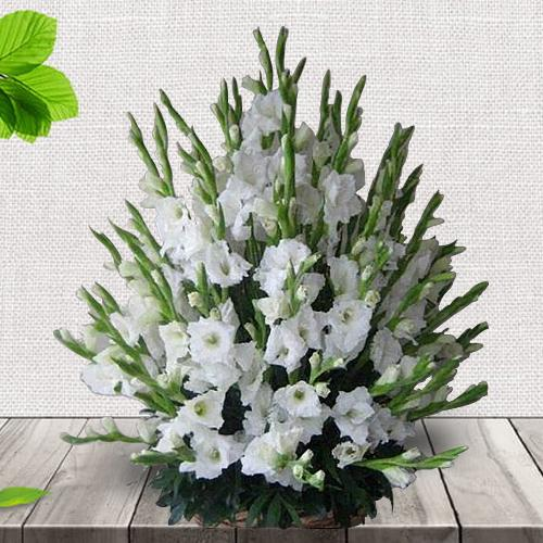 Elegant Basket Full of White Gladiolus