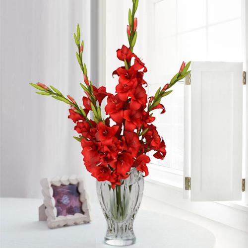 Outstanding Red Gladiolus Arrangement in Glass Flower Vase