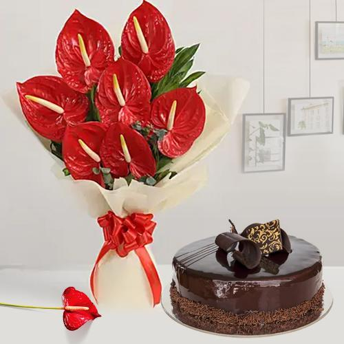 Lovely Combo of Anthurium Bouquet with Chocolate Cake