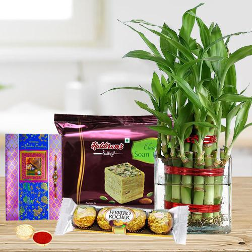 Eco Friendly Rakhi Assortment Gifts