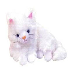 Wonderful Kitty Soft Toy