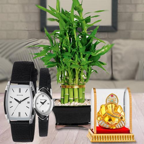 Stylish Sonata Analog Watch with Vignesh Ganesh N Lucky Bamboo Plant
